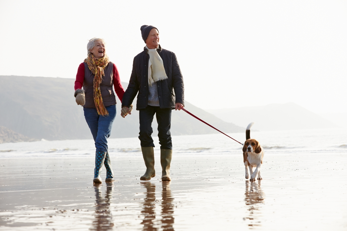 20 Thoughts Every Dog Has On A Walk With ItsHuman