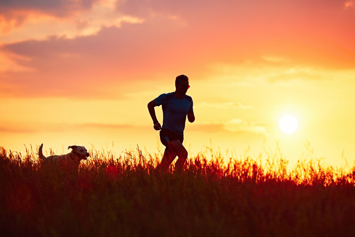 10 Tips For Running With Your Pup